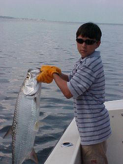 Tarpon fishing in the backcountry of Key West