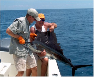 Sailfishing offshore of Key West